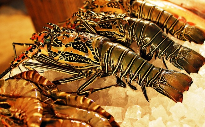 boracay__seafoods_by_z3llll-d3dnwo7