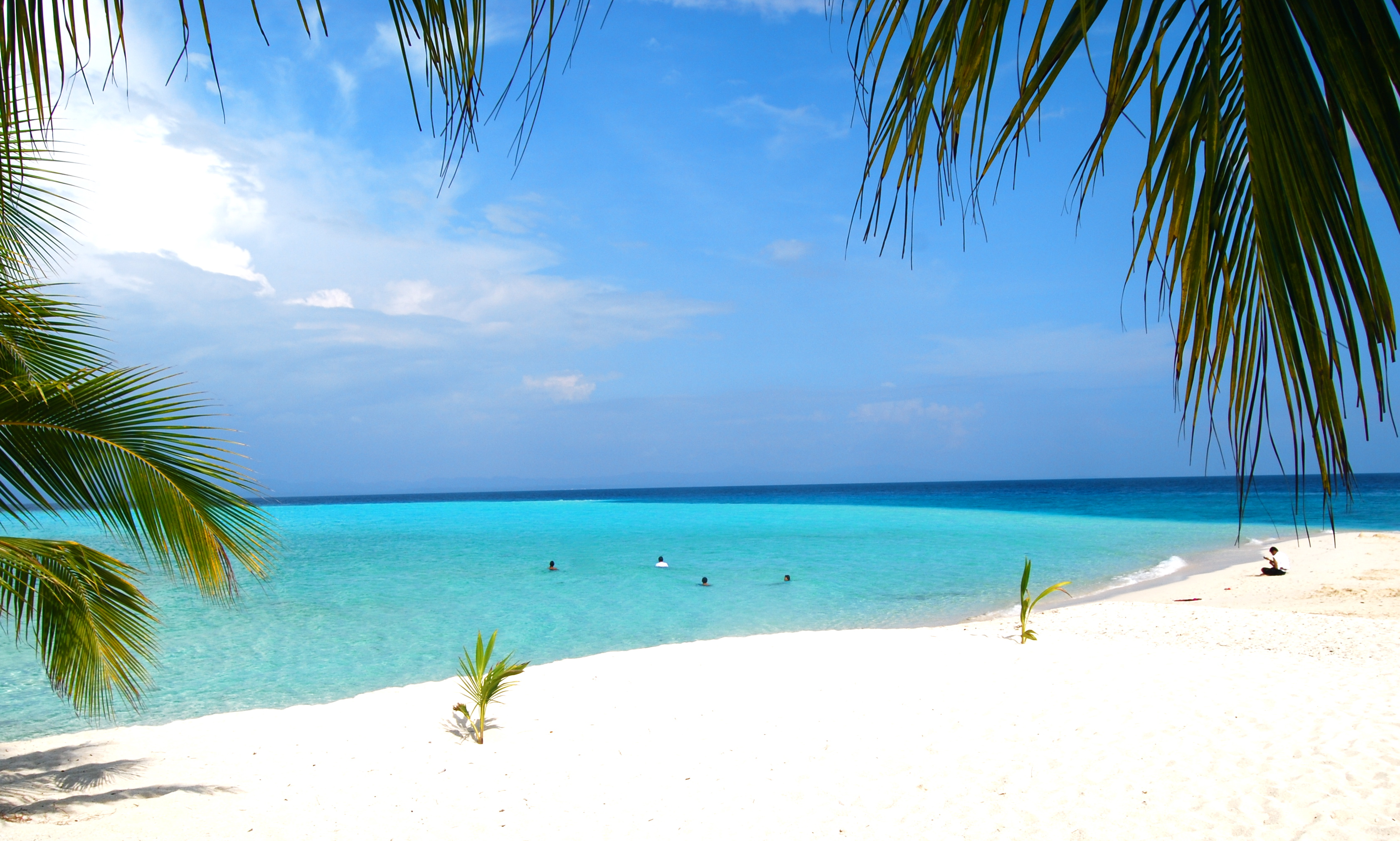 Beach White Sand Beach Philippines Top Beaches
