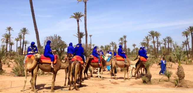camel-ride-marrakech